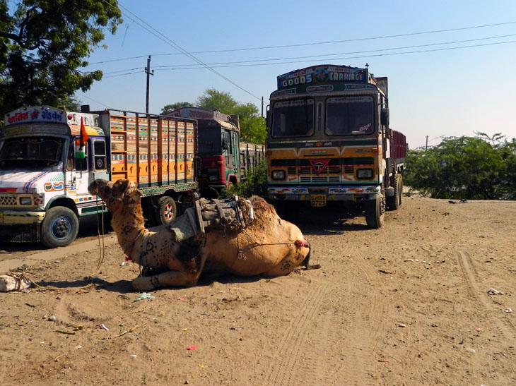 Gujarat_Mandvi_Transport