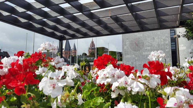 Mainz - Cathedral and flowers