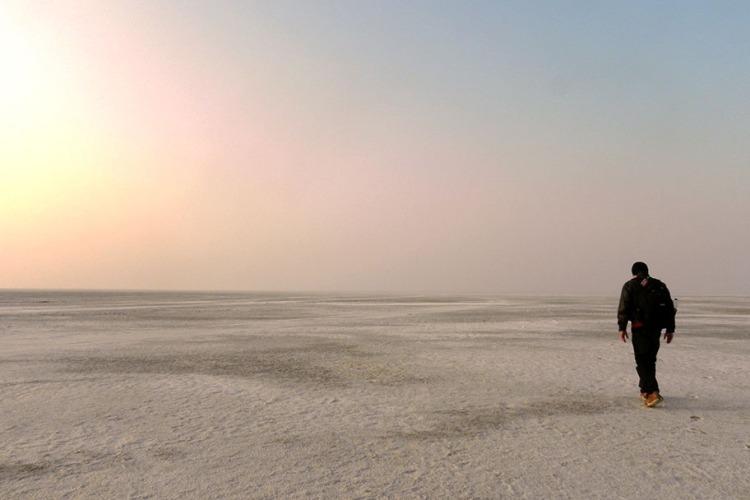Gujarat - Walking in the Rann.JPG