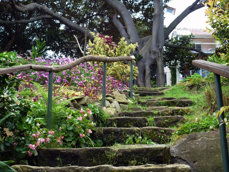 Sydney - McMahons Point garden stairs