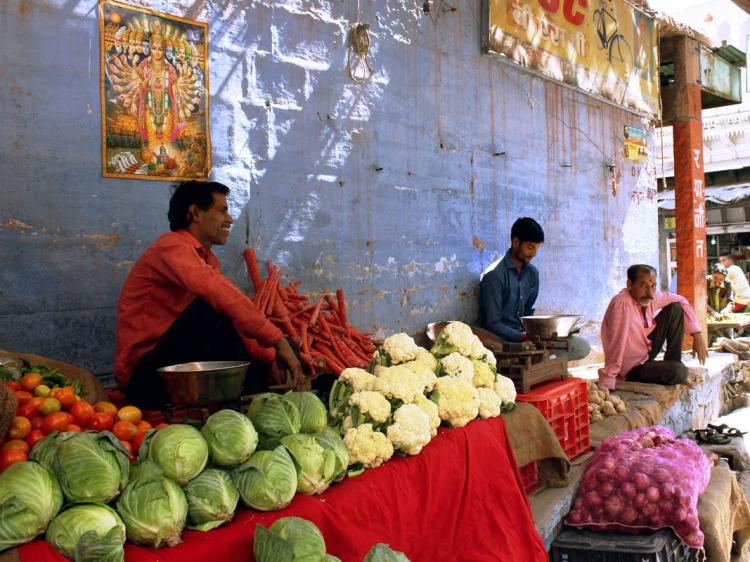 Vegetarianism - Judhpur vendor