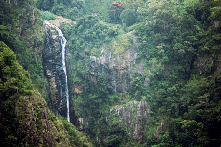 Coonoor - Dolphins nose waterfall