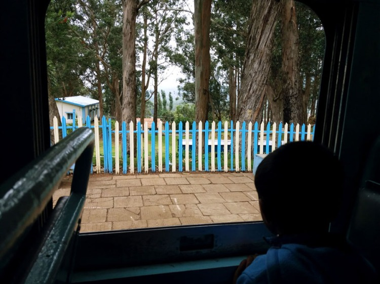 Coonoor - View from the train - picket fence