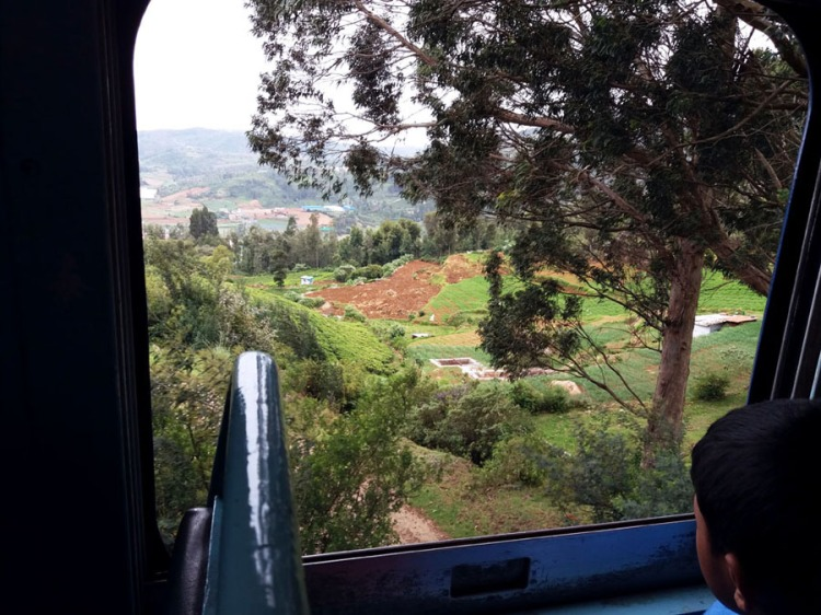 Coonoor - View from the train - Valley