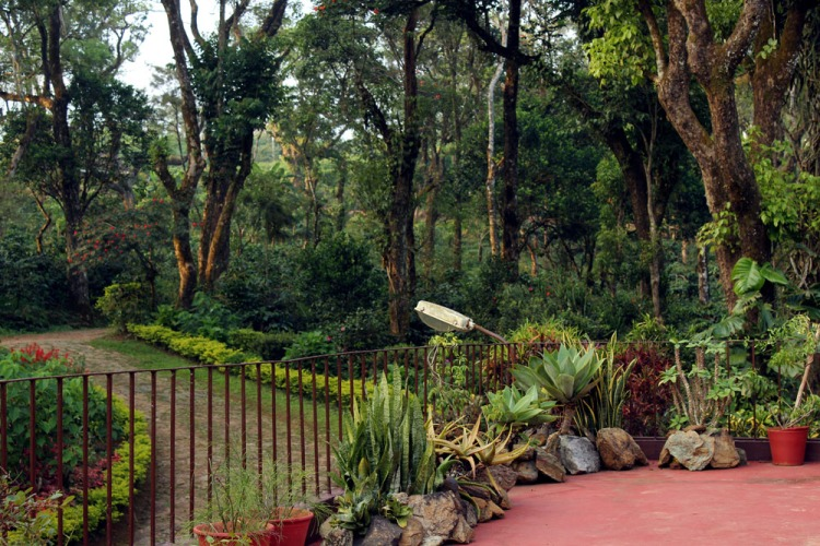 Coorg - Depot estate - Balcony