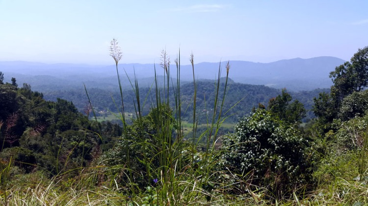 Coorg - Hill view from Taj shortcut