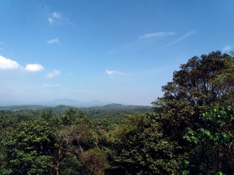 Coorg - View from Taj