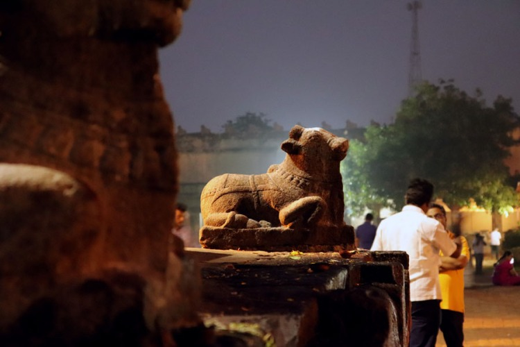 Thanjavur - Small nandi